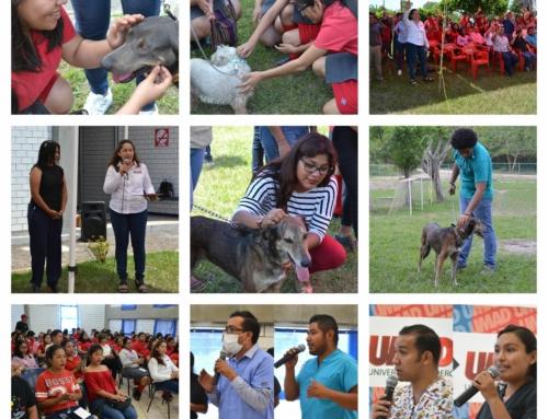 UMAD Papaloapan fomenta la adopción y el cuidado de las mascotas
